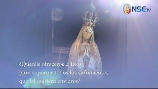 Primera aparición de Nuestra Señora - Capítulo 5 - SALVACIÓN El Mensaje de Fátima