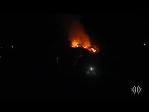Incêndio atinge área de vegetação no bairro Cônego, em Nova Friburgo; vídeo