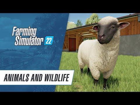Farming Simulator 22 : Animals & Wildlife in Farming Simulator 22