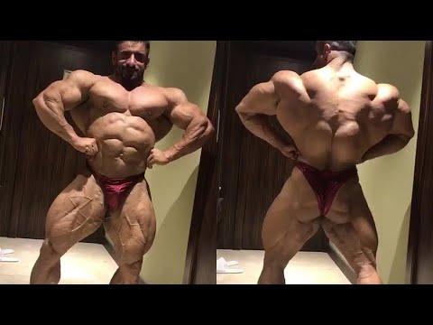 Un muscles plumeux