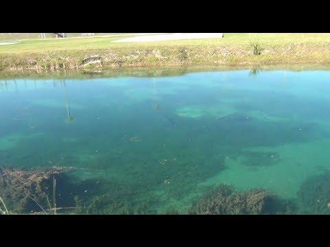 Video Super Secret Fishing Spot