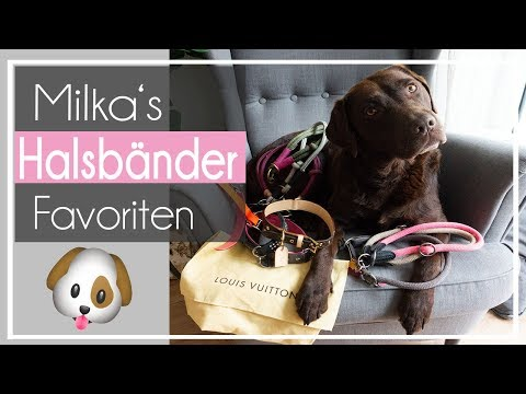 Milka's Halsbänder | unsere Favoriten | von günstig - teuer ♡ Milka Mittwoch ♡  KaroLovesMilka