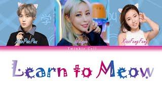 Wengie, XiaoFengFeng, XiaoPanPan - Learn to Meow (Remix) Lyrics (CH/ENG/Rom)