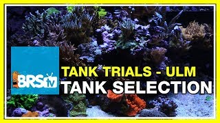 What makes an Ultra-Low Maintenance (ULM) Reef Tank? | BRStv Tank Trials EP2