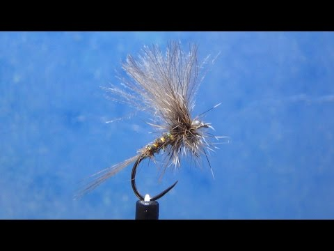 fly tying MARCH BROWN PARDON por Jorge G