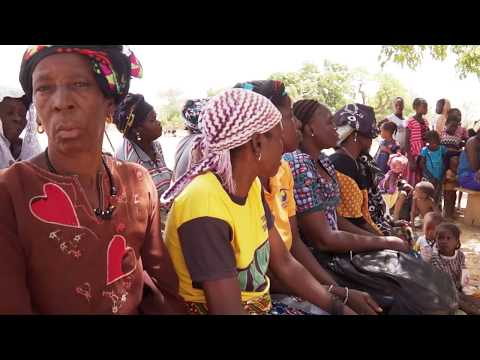 Vidéo Youtube - Financial services and agricultural innovations in Burkina Faso (in French)