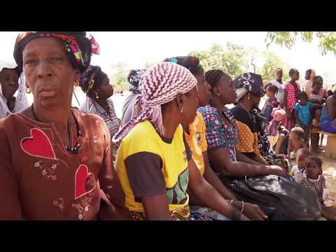 Vidéo Youtube - Services financiers et déploiement d'innovations agricoles au Burkina Faso