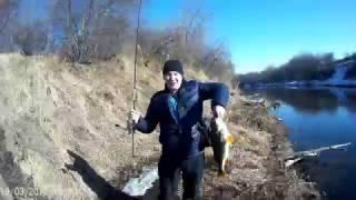 Где рыбалка в красноярске на окуня