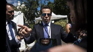 Trump's Goons Bicker Like Real Housewives Of DC