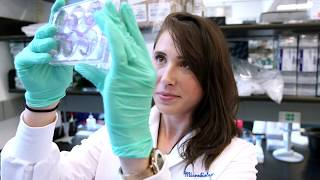 Immunology Graduate Program | Cincinnati Children's