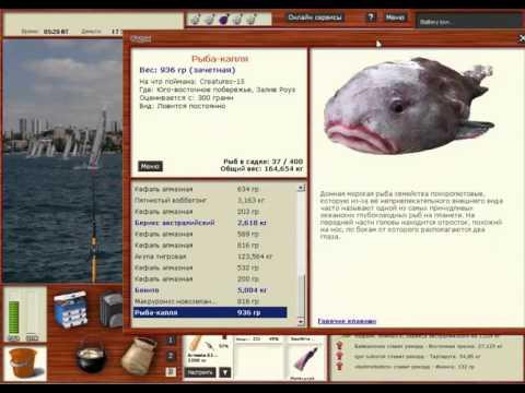 Русская Рыбалка 3.99 Рыба-капля