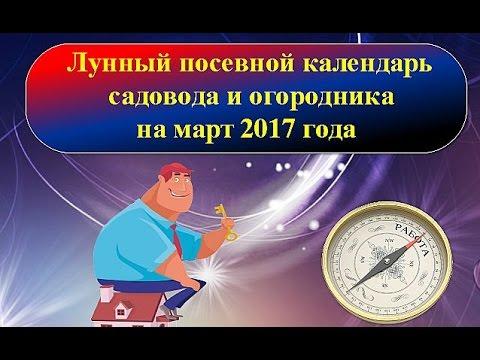 Гороскоп год крысы знак зодиака весы