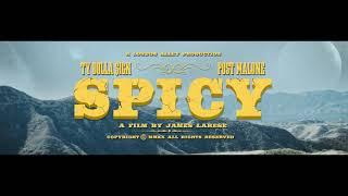 Ty Dolla $ign - Spicy (feat. Post Malone) [Music Video Trailer]