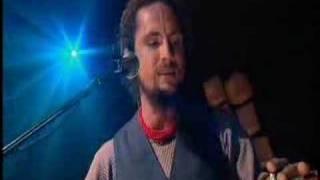 Treat Yo Mama - John Butler Trio