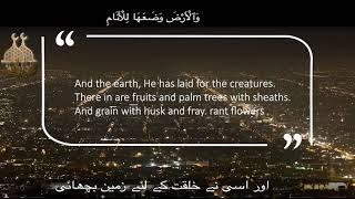 Really Beautiful Quran Recitation Anas Younus   Surah E Rahman