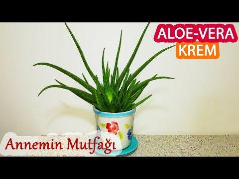 Aloe Veradan Krem Nasıl Yapılır? ( Nemlendirici Doğal Krem )