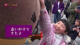 2019/04/02放送・知ったかぶりカイツブリにゅーす
