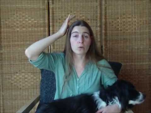 EFT tapping for pets and animals (part 1).