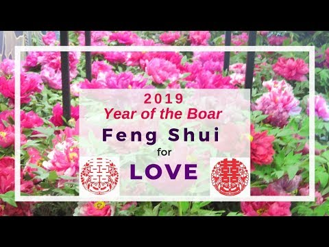 Download Flying Star Fengshui South Sector In 2019 Pig Year Video