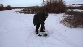 Рыбалка в черебаево волгоградская область село