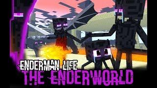 Monster School : Enderman