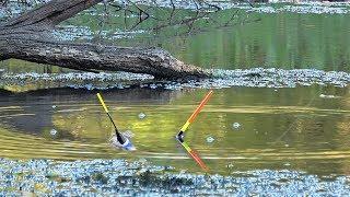 Рыбалка в аксубаево