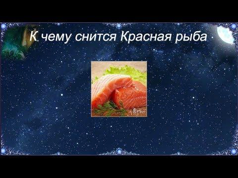 К чему снится Красная рыба (Сонник)