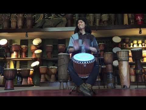 iroko djembe with synthetic Head and Lighting
