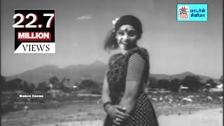 Annakili Unna Theduthe    அன்னக்கிளி உன்ன தேடுதே    Annakili   S.Janaki   Ilaiyaraaja