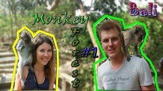 Bali. Ubud. Monkey forest. Часть 1