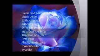 CHRISTY MOORE And MARY BLACK Bright Blue Rose Cover   YouTube