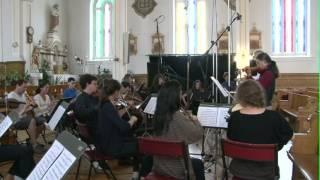 Brandenburg concertos gone wild! Johann Sebastian Bach - Ensemble Caprice