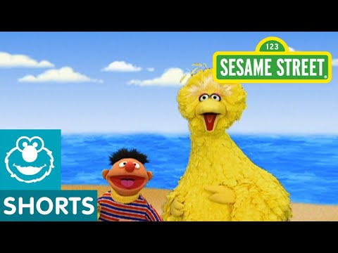 Sesame Street: Journey to Ernie: Beach