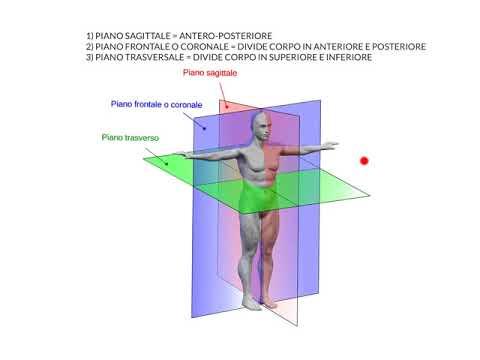 Di quanto si può anestetizzare forti dolori alla schiena