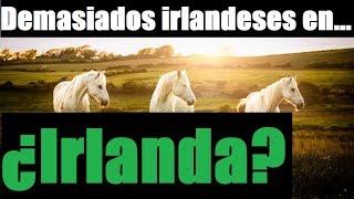 Demasiados Irlandeses en…Irlanda! (¿Plan Kalergi y Etnocidio Blanco?)