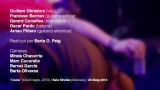 BarraLliure! - Ocell Negre [2013] - Lluna [Videoclip Oficial]