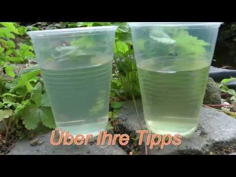 Teichfilter für den Gartenteich (Fischteich) Pond filter Wasserfilter selber bauen