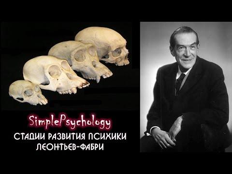 История зоопсихологии. Стадии развития психики Леонтьева-Фабри.