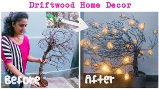ഇത്തിൾക്കണ്ണി കൊണ്ട് ഒരു Easy Home Decor|Driftwood Craft|ഡ്രിഫ്റ്റ്വുഡ് |Malayalam| ChrizAnn Diary