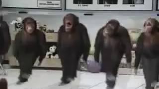 Afrojack - Bassride (Dancing Apes Edit)