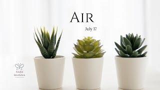 """No More """"in & Out"""" - Choose. AIR Sign July 17 Gemini Libra Aquarius"""