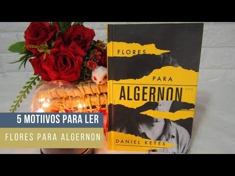 5 motivos pra ler: Flores para Algernon - Daniel Keyes #MEA02