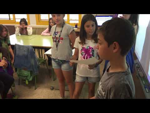 Video Youtube Els Pins