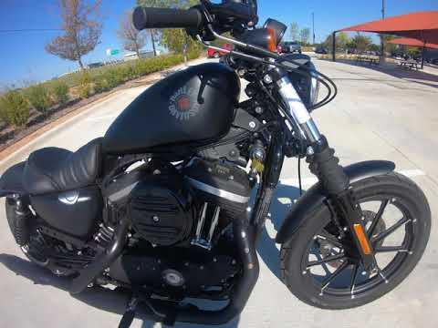 2020 Harley-Davidson® Iron 883™  XL883N