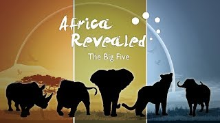 Africa Revealed: What are the big five?