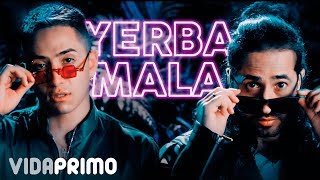 Yerba Mala - Dalmata feat. Dalmata (Video)