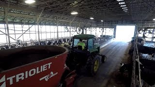 Feeding Cows, Milker Maintenance and more