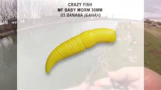 Crazy fish mf h-worm 1.65