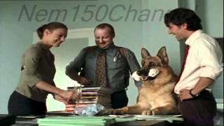 Kommissar Rex-Marc(8x3)
