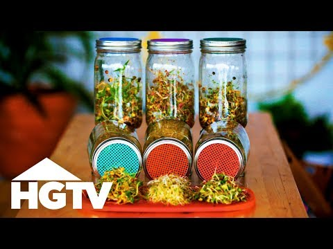 How to Grow Sprouts in Jars - Way to Grow - HGTV